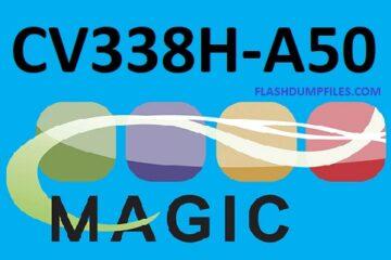 Flash_Dump_Files